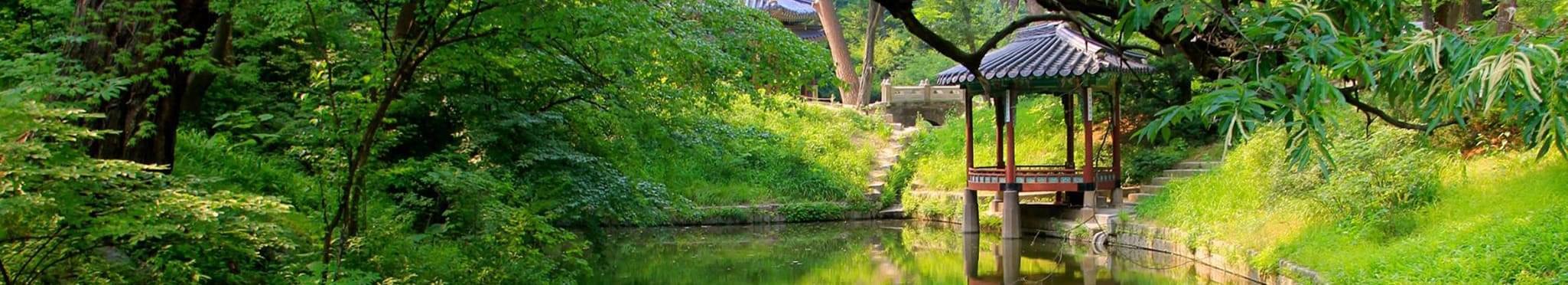 Аллеи Тайного сада:<br>Сеул, Йонъин, Сеул