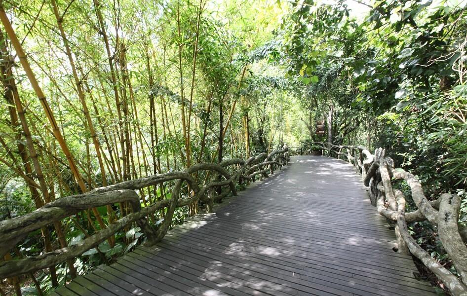 Парк Янода на Хайнань - фото