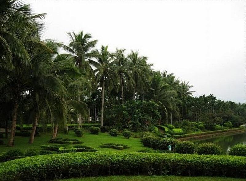 Сад Синлун на Хайнань - фото