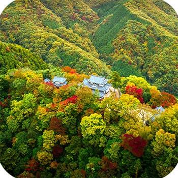 Замок Окаяма фото 4