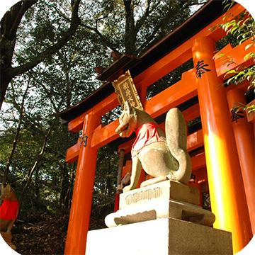 храм Фусими Инари фото 2
