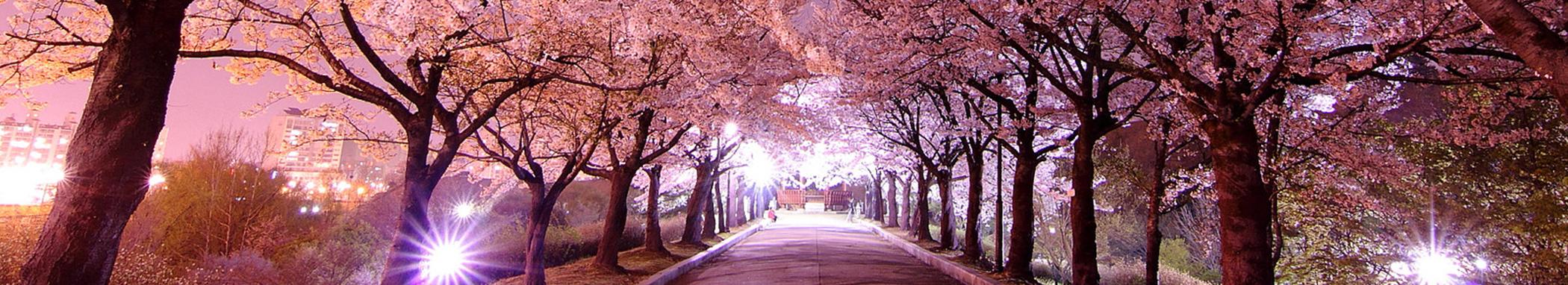 Ароматы весны:<br>Сеул, Кёнджу, Пусан