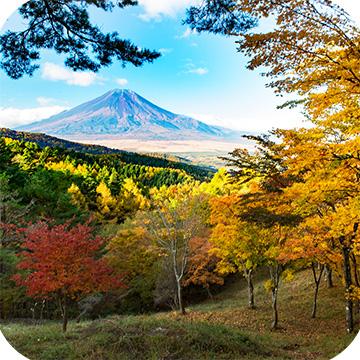 гора Фудзи фото 18