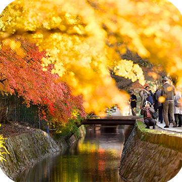 осень в Киото фото 1